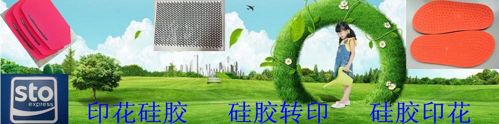 广州林海有机硅科技有限公司